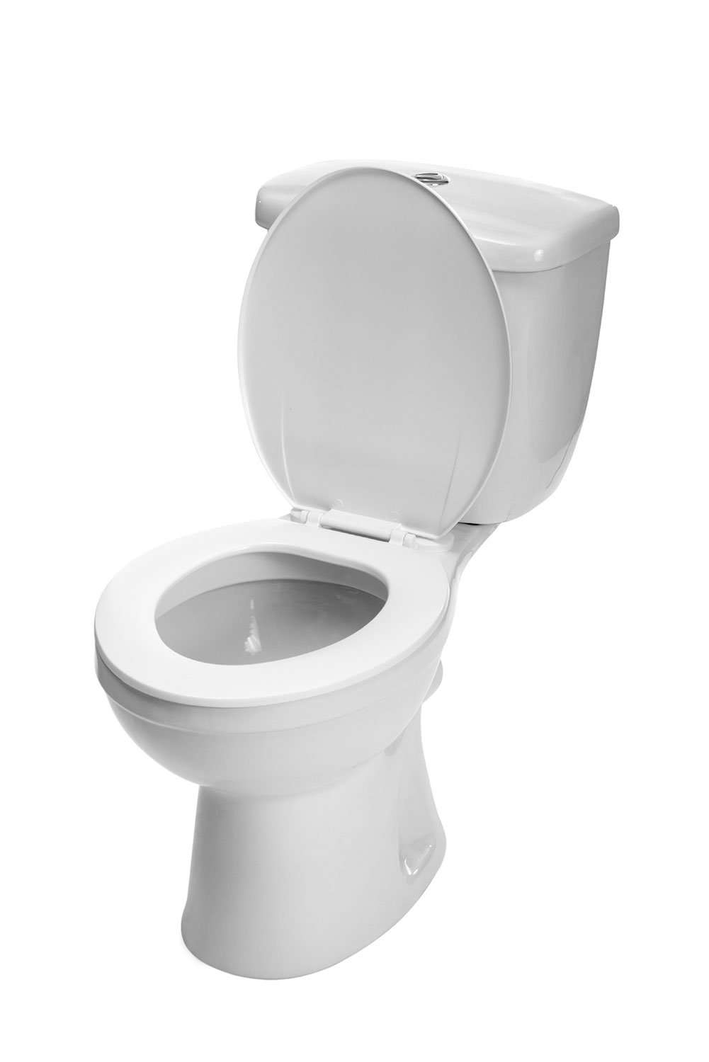 Construction Toilet Bowl : Finding your porcelain where industry leaders get a